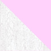 Artic-Rosa